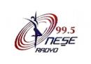 Radyo Neşe